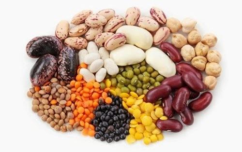 protein1.jpg