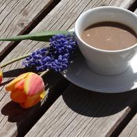 Ti választottátok: gyógygombás kávé