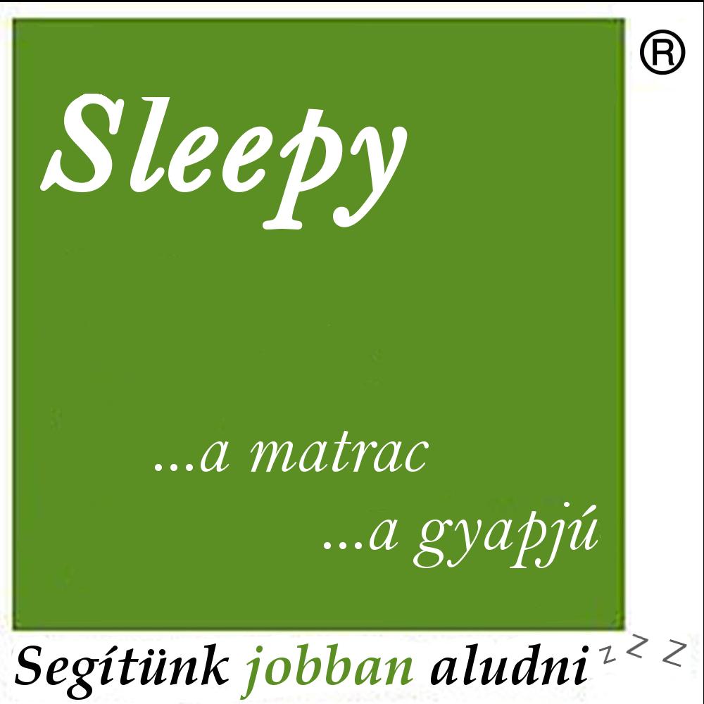 sleepylogoo.png