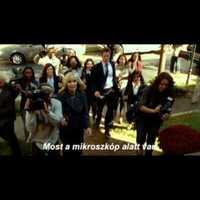 Mozibemutatók: 2013.01.24