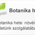 Programajánló - A botanika hete: növények életünk szolgálatában