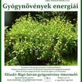 Gyógynövények energiái