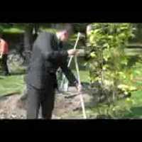 Föld napi faültetés videoklip