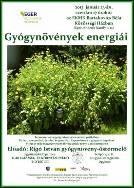 Gyogynovenyek_energiai_eloadas.jpg