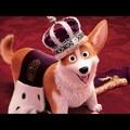 Film(nem) ajánló: A királynő kutyája