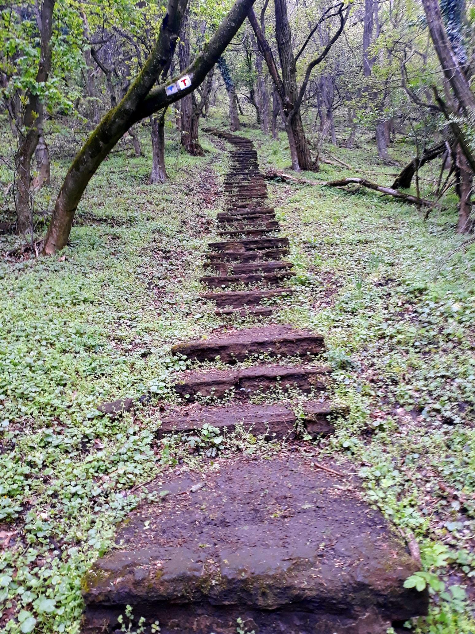 277 lépcsőfok