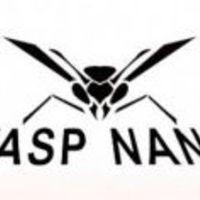 Mini dl: Wasp nano