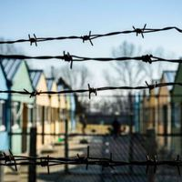 Rendet bontanék egy angol menekülttáborban
