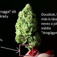 Megdöbbentő kép Várady drogügyéről!