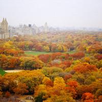 Az ősz káprázatos színei