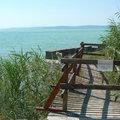 Ha nyár, akkor Balaton(aliga)