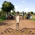 Gyerekek és játékaik a világ számos pontjáról