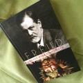 Freud lelkibeteg receptjei