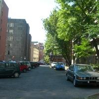 Befejezték a fák kivágását és a gallyazást, ismét használható a parkoló