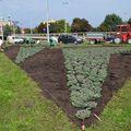 Főkert: Kezdődik az őszi növényültetés