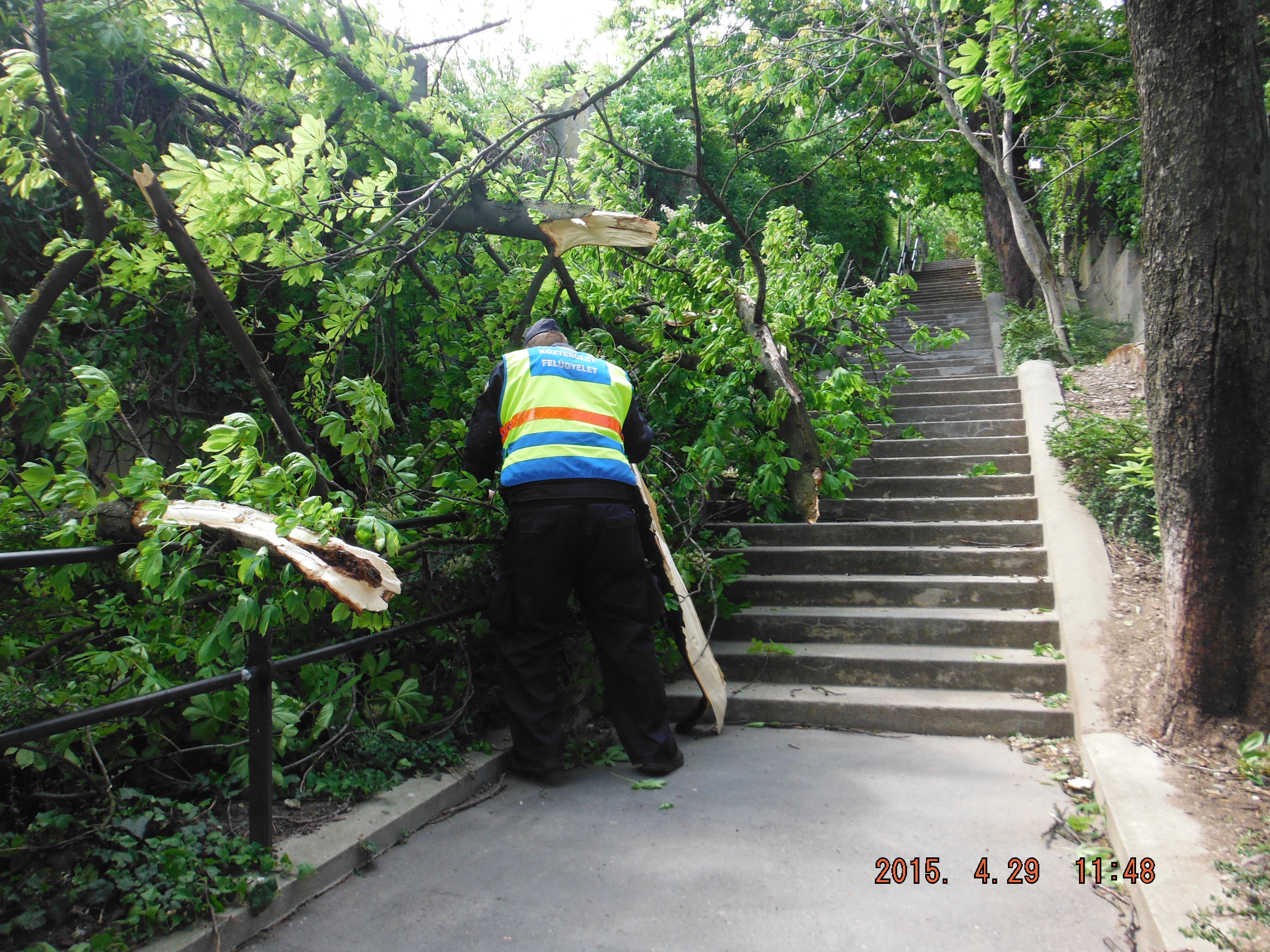 Linzi lépcső