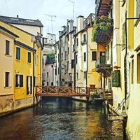 Treviso Titkai ...