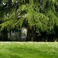 """Az olasz """"Primavera"""" minden pillanata..."""