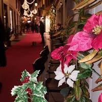 Udine, Amore, Natale ...