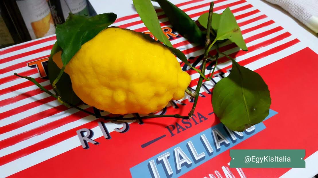 citrom_1.jpg