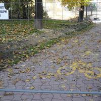 Horváth-kerti kitekintő