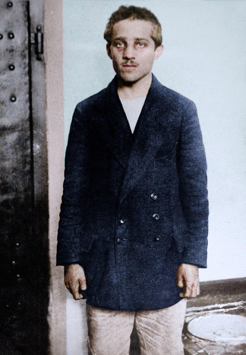 800px-gavrilo_princip_in_his_prison_cell_at_the_terezin_fortress_1914_27324412597_1.jpg