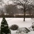 Egy téli reggel