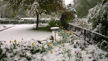 Áprilisi hó - Snow in April, Hungary