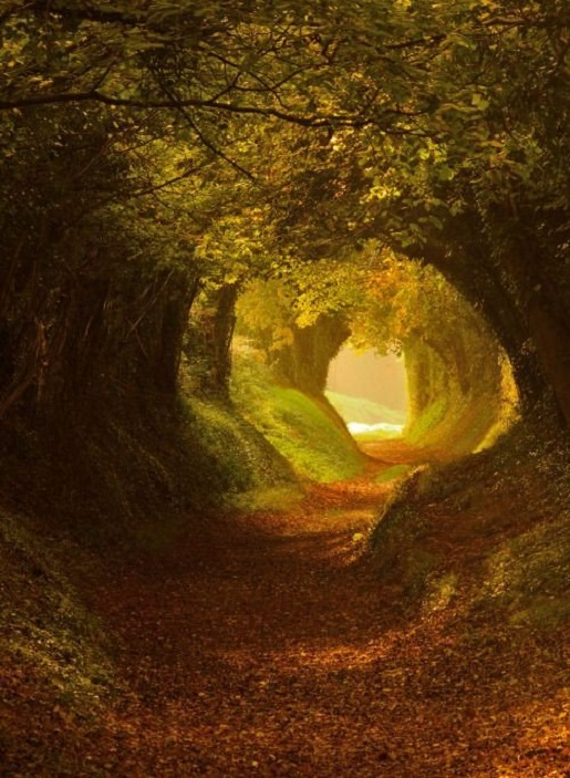 hobbitok.jpg