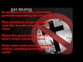 Bad Religion - Drunk Sincerety