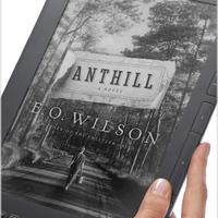 A nagyság átka, avagy Kindle DX Graphite