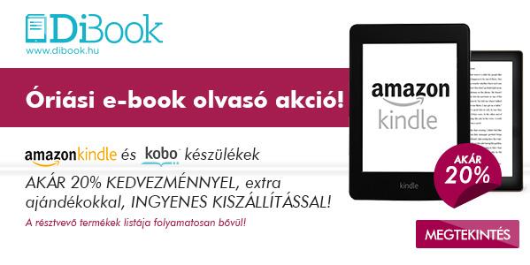 dibook-599x300.jpg