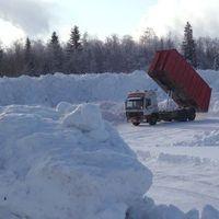 Kincskeresők a hóban
