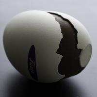Csoki, igazi tojásban