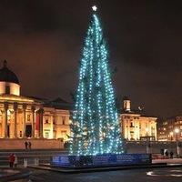 A Trafalgar téri karácsonyfa története