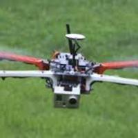 Betiltották a drónozást a királyi parkokban