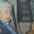 Csendesen ünnepli 94. születésnapját II. Erzsébet