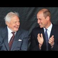 Környezetvédelmi díjat alapít Attenborough és Vilmos herceg