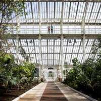 Újranyílt a Kew Gardens mérsékelt övi üvegháza - fotókkal