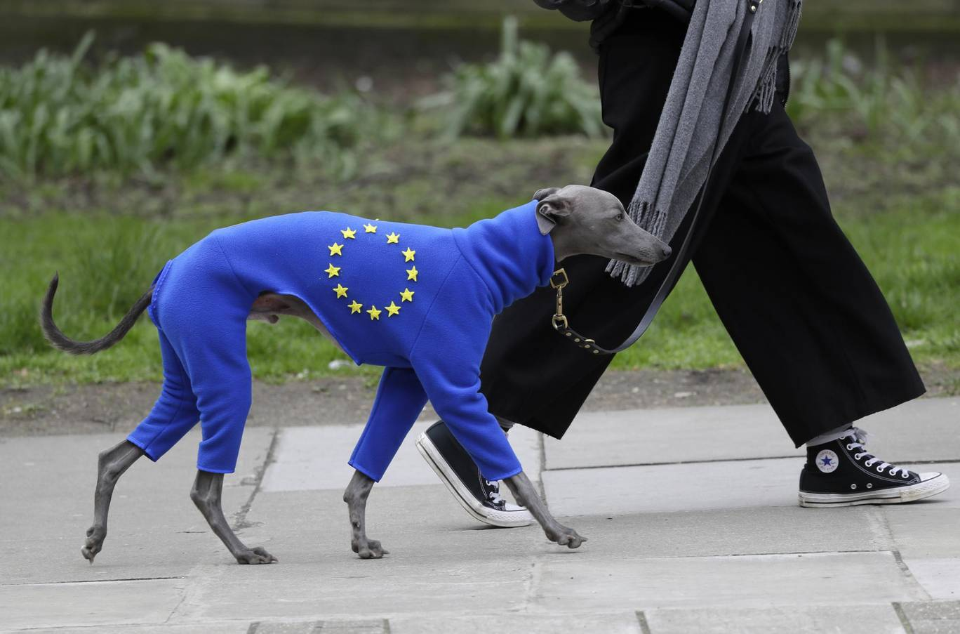 anti-brexit-march-9.jpg