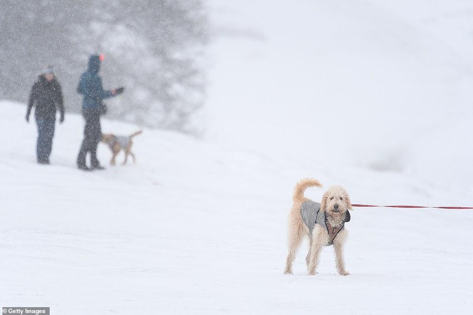 sevenoaks-winter.jpg