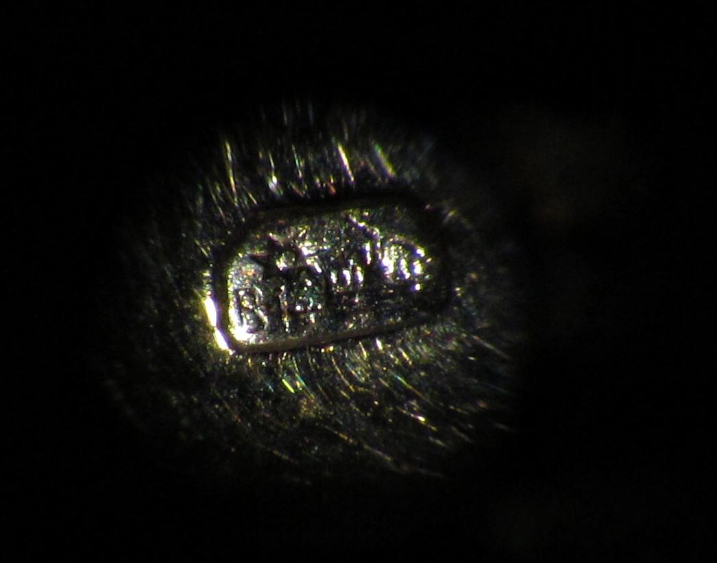 A képen egy 14 karátos fehér-arany gyűrű fémjele látszik nagyító alatt 7b2a4e6701