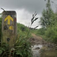Camino del Norte - 2. nap - San Sebastian - Getaria