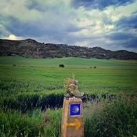 El Camino Francés 2017 - epilógus és prológus
