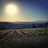 23. nap - 26,5 kilométer - Vega de Valcarce