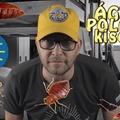Ágyi poloska kisokos (videó)