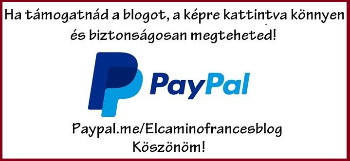 blog_tamogatas_paypal_2.jpg