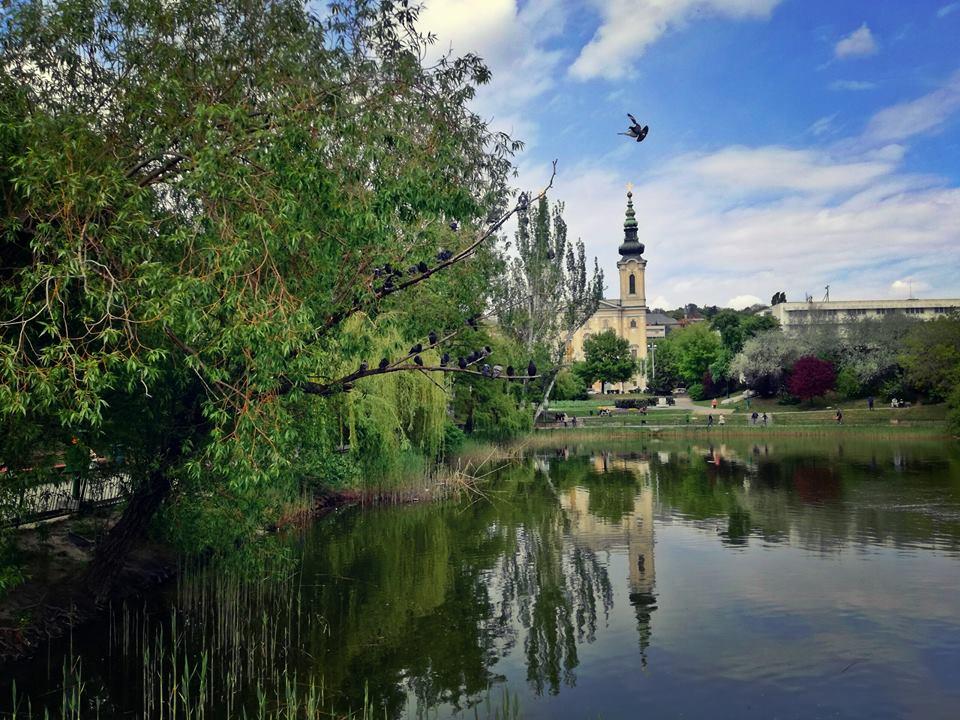 A Feneketlen tó galambokkal, mögötte a templom a Villányi úton