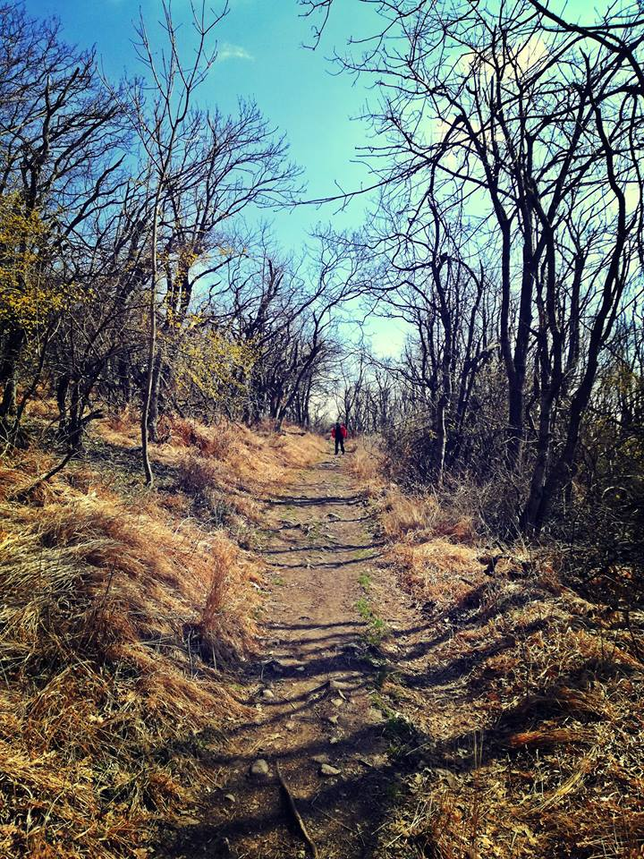 Séta az ösvényen
