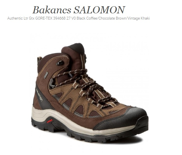 salomon_ltr_gtx_authentic_bakancs_el_camino.jpg